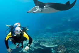 Découverte des fonds sous-marins aux Maldives